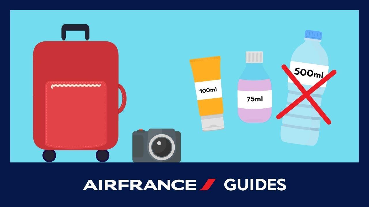 bagage a main air france