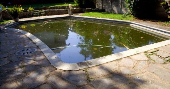 eau verte piscine