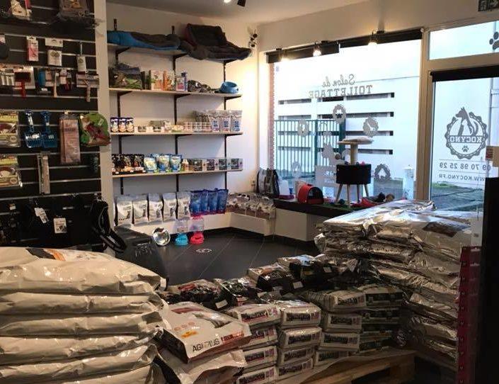 boutique pour chat