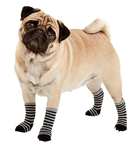 chaussette pour chien