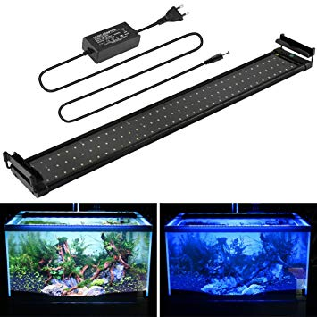 eclairage aquarium