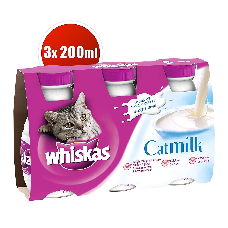 lait pour chat