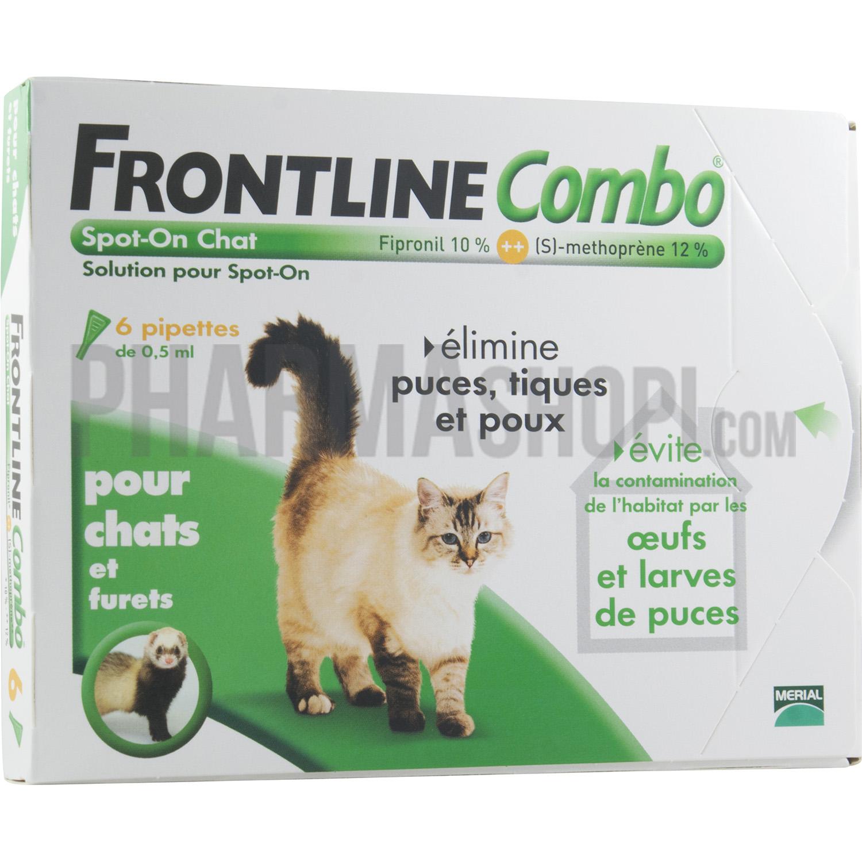 pipette pour chat