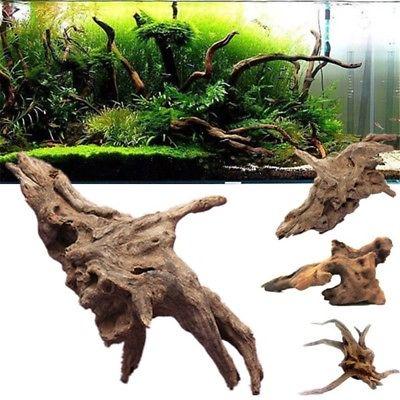 racine aquarium