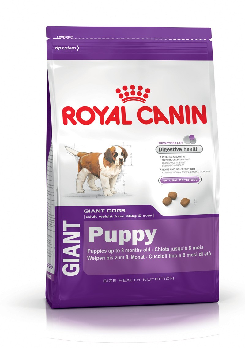 royal canin croquettes chien