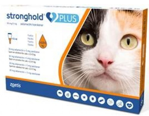 stronghold pour chat
