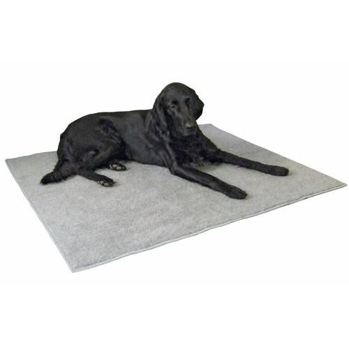tapis chien